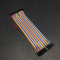 Cable Male-Female 20cm (40 dây đực - cái)